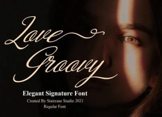 Love Groovy Calligraphy Font