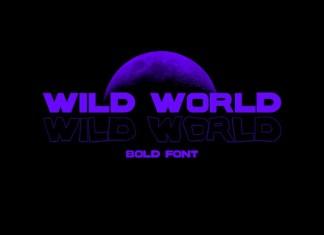 WILD WORLD Display Font