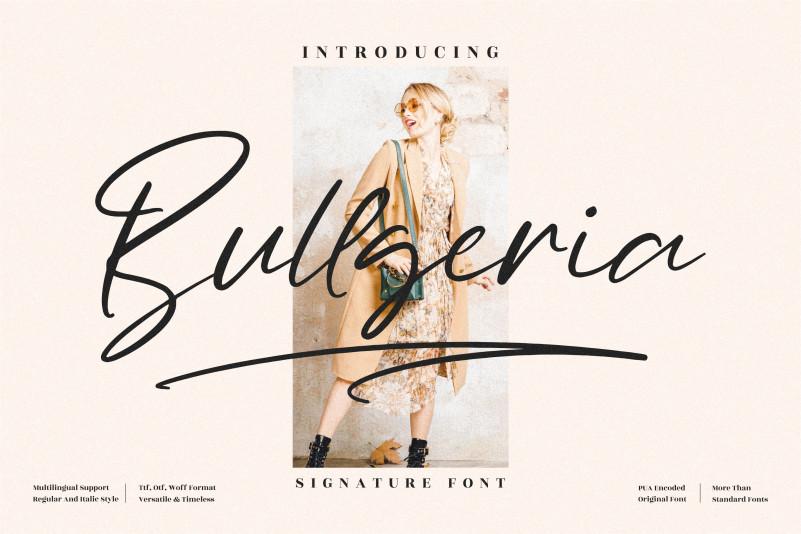 Bullgeria Script Font