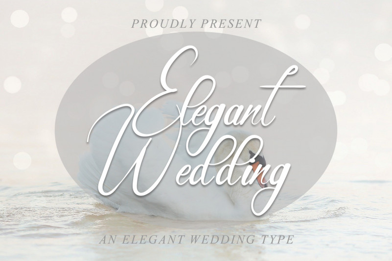 Elegant Wedding Script Font