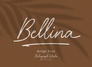 Bellina Handwritten Font
