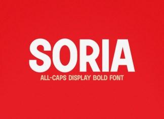 Soria Sans Serif Font