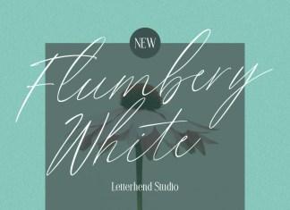 Flumbery White Handwritten Font