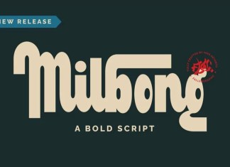 Milbong Bold Script Font
