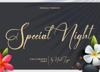 Special Night Script Font