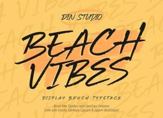 Beach Vibes Brush Font