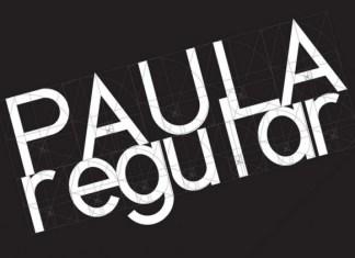 Paula Sans Serif Font