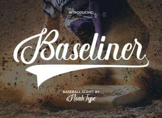 Baseliner Script Font