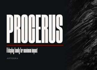 Procerus Sans Serif Font