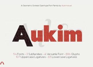 Aukim Sans Serif Font