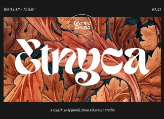 Etnyca Display Font