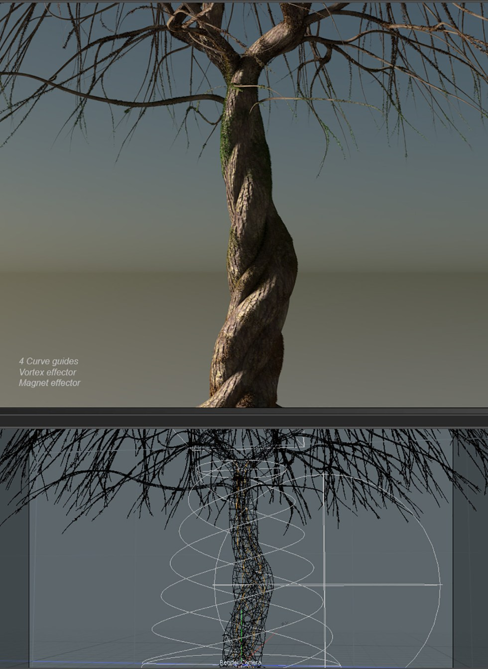 A spiral tree