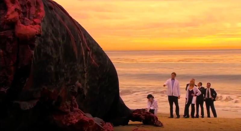 A screenshot of the final scene