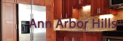 Ann Arbor Hills
