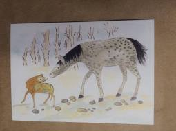 Illustrations by Gabi Wang
