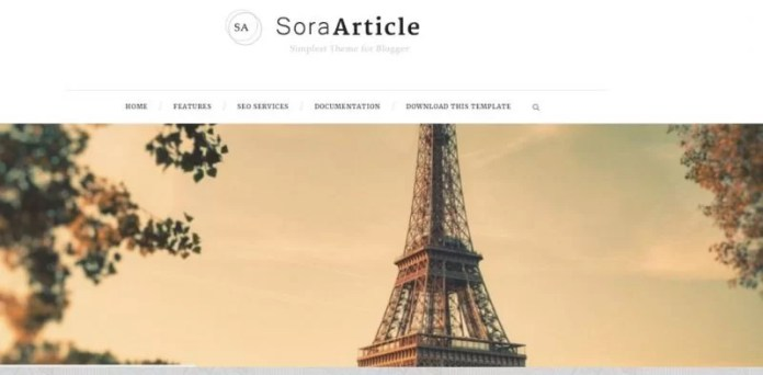 Sora Article