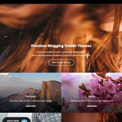 Layouts For Tumblr Flower | Gardening: Flower and Vegetables