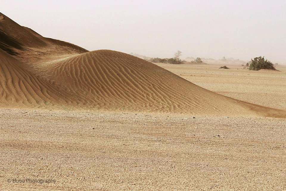 Travel to Chalbi Desert (former Lake Chalbi)