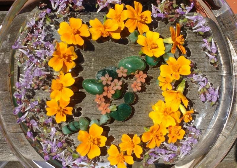 Spirituelle Blütenessenzen selbstgemacht – eine Anleitung