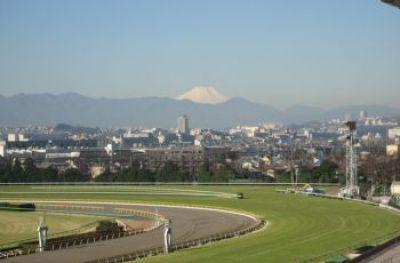フジビュースタンドから富士山を拝む