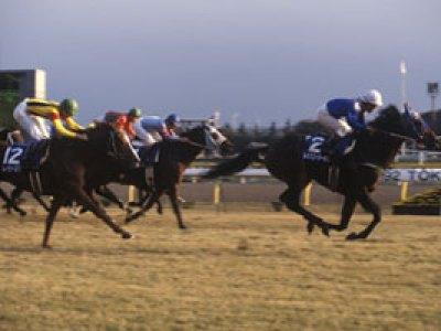 第106回天皇賞(秋)の勝ち馬レッツゴーターキン
