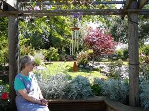 Old Folk Remedies: Ten Good Choices for Healing Gardens Old Folk Remedies: Native Plants- Healing Gardens