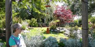 partial shade Old Folk Remedies: Ten Good Choices for Healing Gardens Old Folk Remedies: Native Plants- Healing Gardens