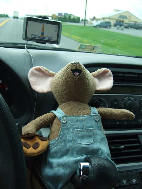 travel mascot vacation mouse in car