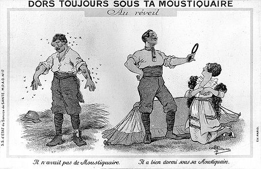 old French cartoon advocates sleeping under mosquito net
