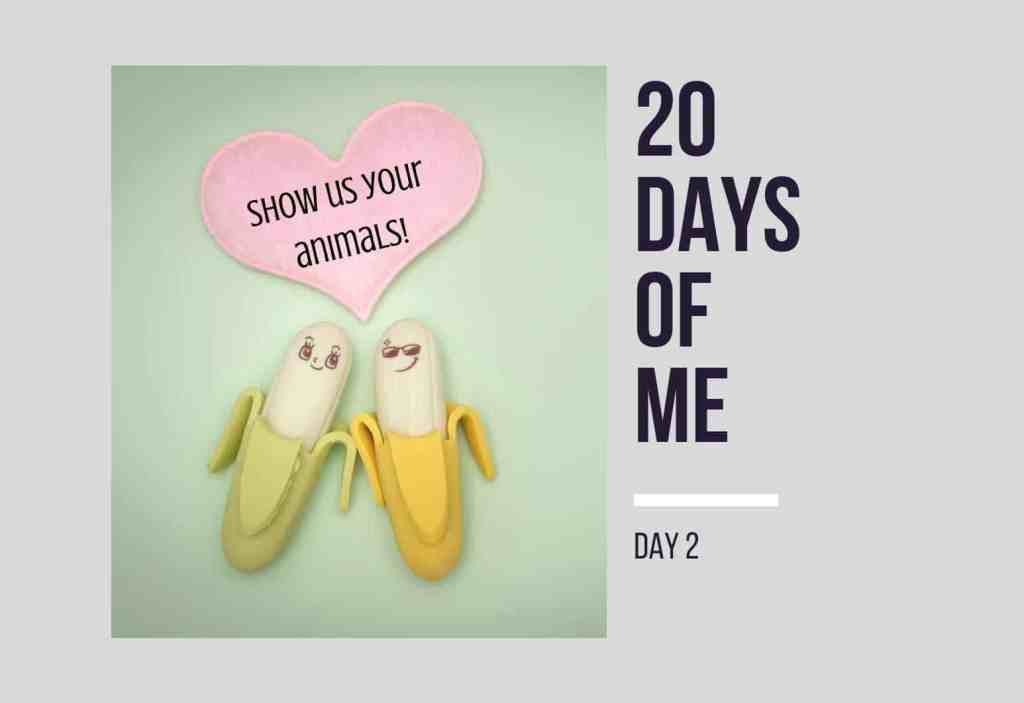 20 Days of Me - Day 2 Show us your animals!