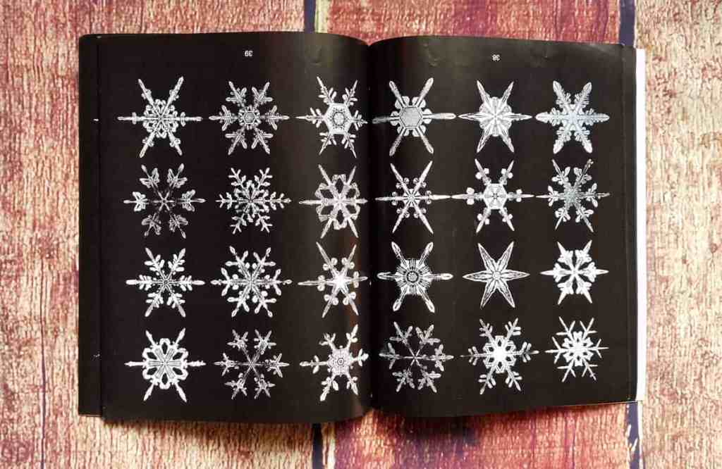 Interior pages of Photographs of Snowflakes by W. A. Bentley show radial symmetry of snow crystals.