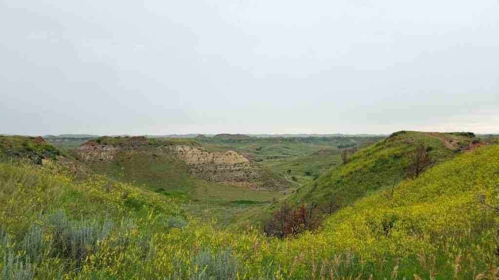 Grasslands to the horizon at Theodore Roosevelt National Park