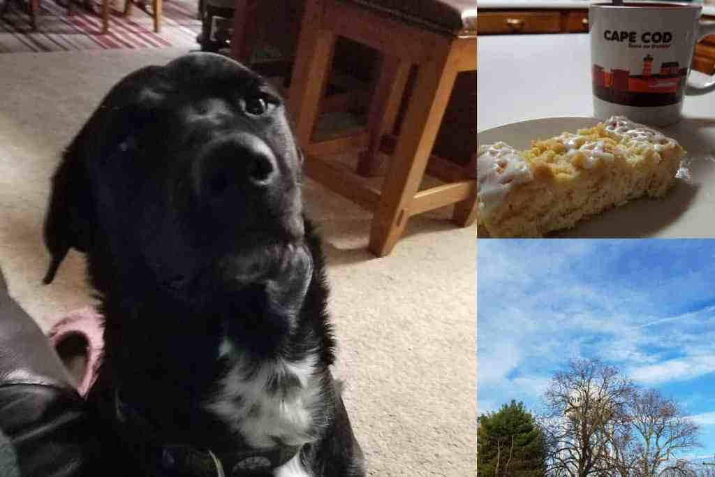 collage of dog, coffee, and blue sky