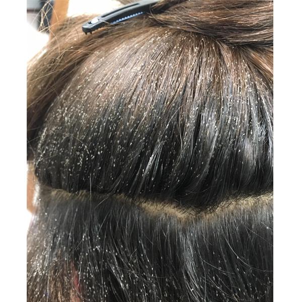 client  lice