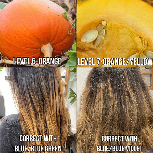 diagram for bleaching brown hair to blonde and how to get rid of orange tones