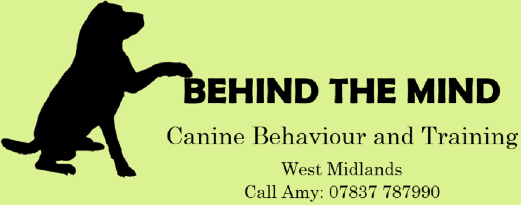 Behind the Mind Training