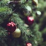 牧者恩言:過完聖誕節的牧羊人(主鑒)2018.01.08
