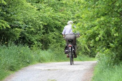 mooi zottegem - Leirensweg met fietser - IMG_5517