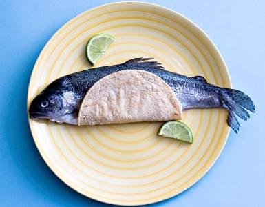 fish taco story photo tickle me fish tacos