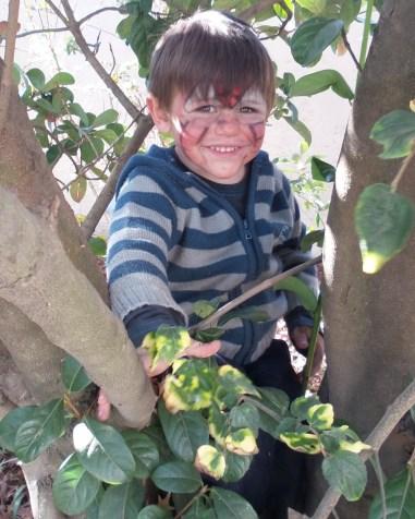 Nephew L loves climbing trees!