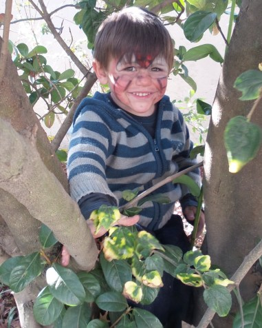 Nephew L loves climbing trees!