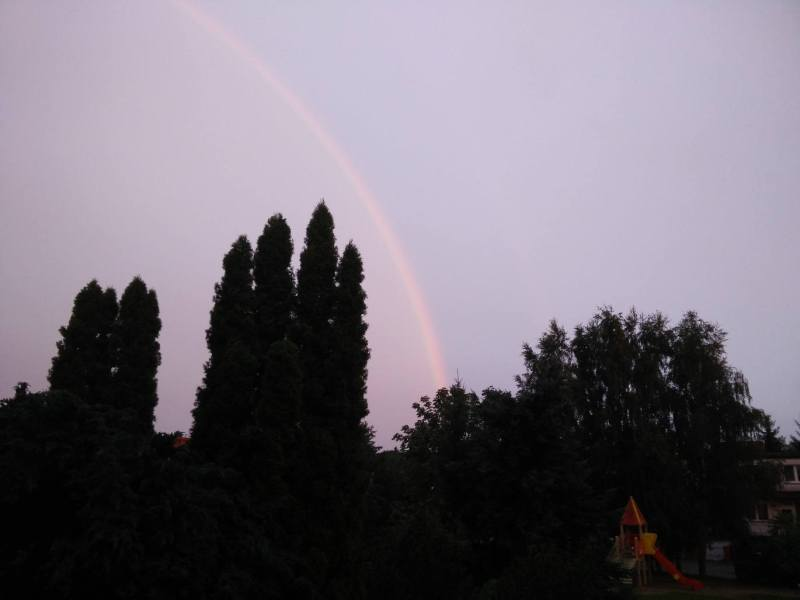 Rainbow arching down into silhouette of tree line