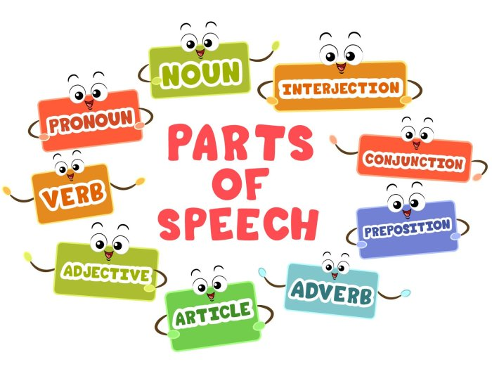 An infographic showing different parts of speech in English