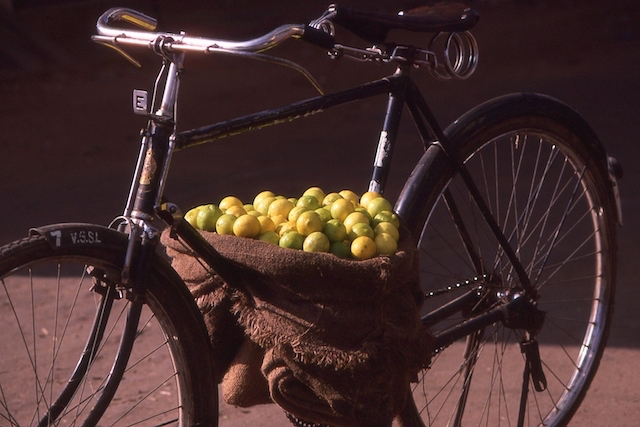 Foods to stimulate thoughts Lemons and limes in hessian sack on bicycle
