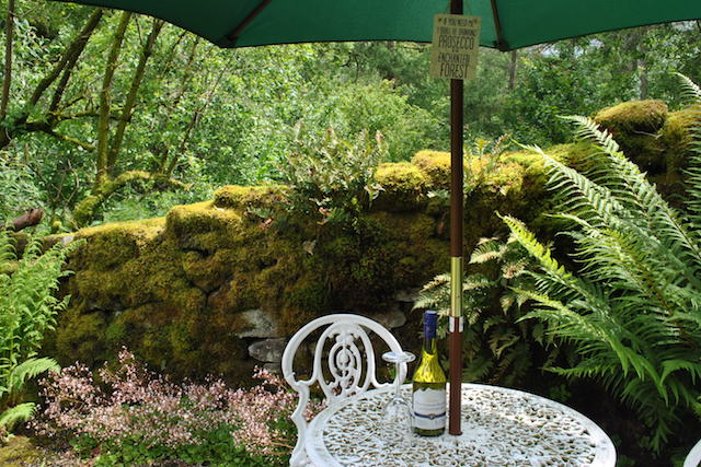 Enjoy a glass of wine from the top terrace at the cottage in the forest