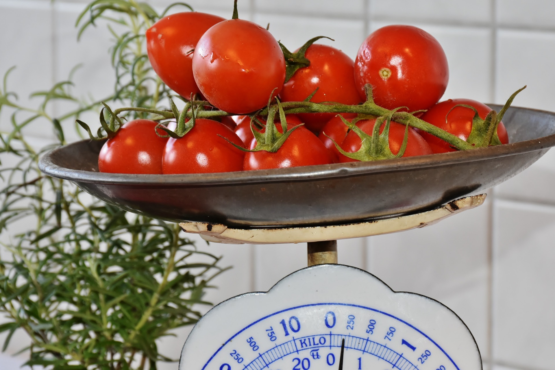 The Philosophy Of Eating for weight control healthy weight