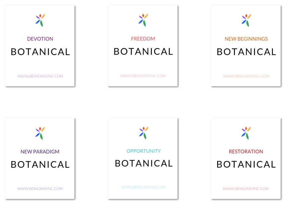 Being In Sync Botanicals