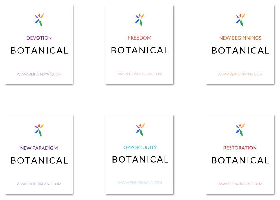 Being In Sync Botanicals