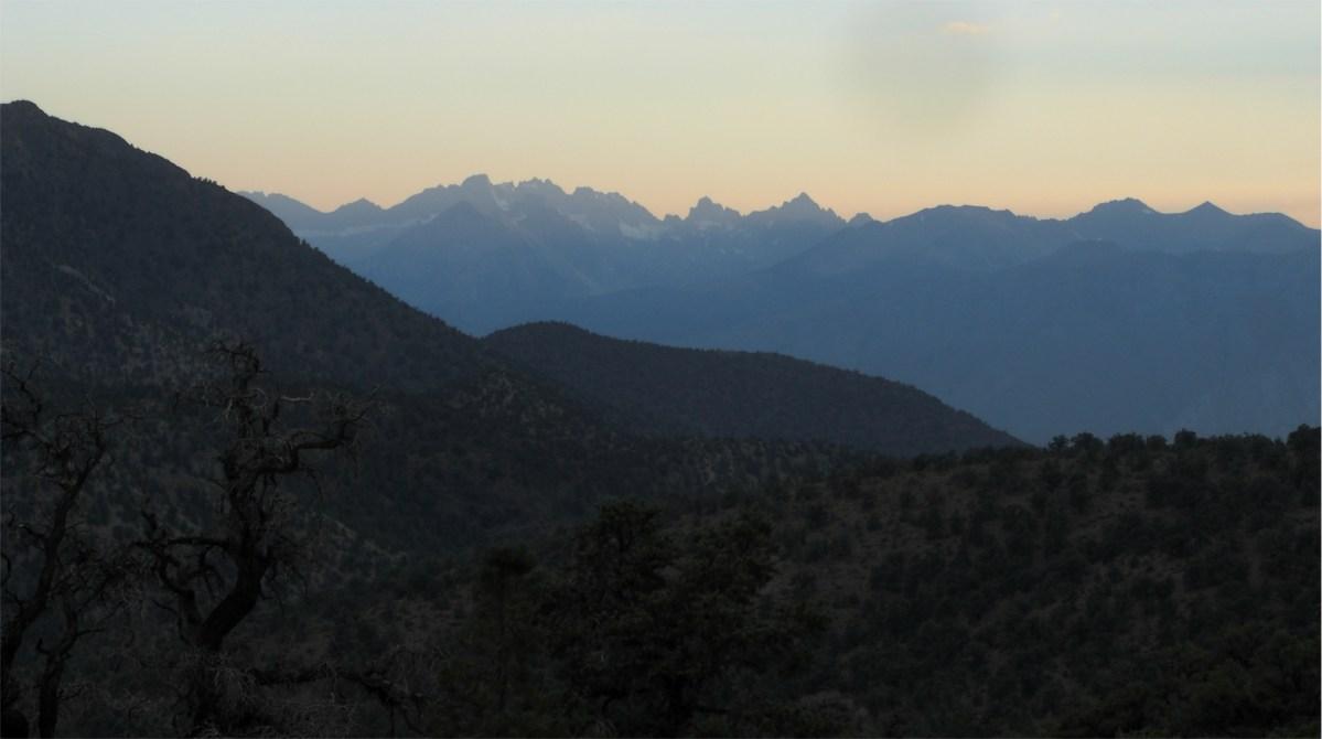 Lichen Yoga in the California Alpine: Yoking the creative and scientific parts of self