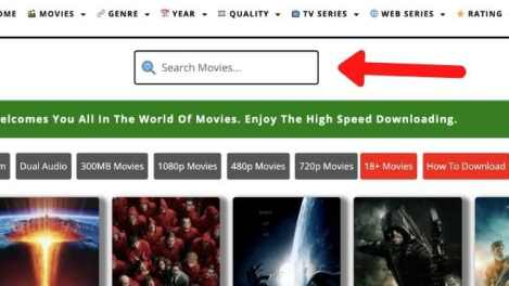 search bar movieskiduniya